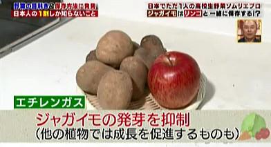 ハナタカ優越館1005ジャガイモリンゴ.jpg