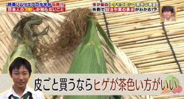 ハナタカ優越館824トウモロコシヒゲ.jpg