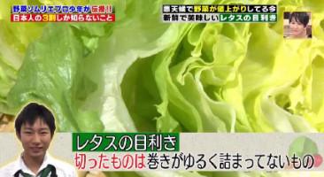 ハナタカ優越館824レタス目利き半分.jpg