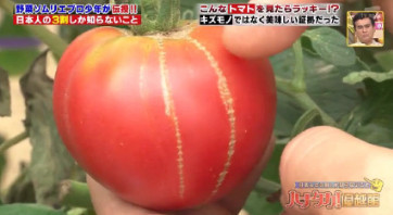 ハナタカ優越館824野菜ソムリエトマト.jpg
