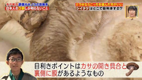 シイタケの目利き.jpg