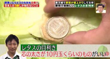 ハナタカ優越館824野菜ソムリエレタス目利き2.jpg
